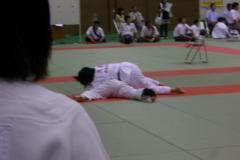 pic2010_07_04_3_1