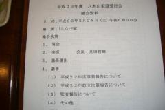 pic2011_05_28_1_1